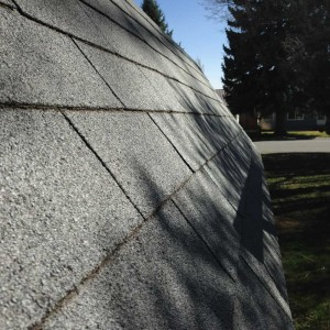 Residential Roofing Services in Evanston