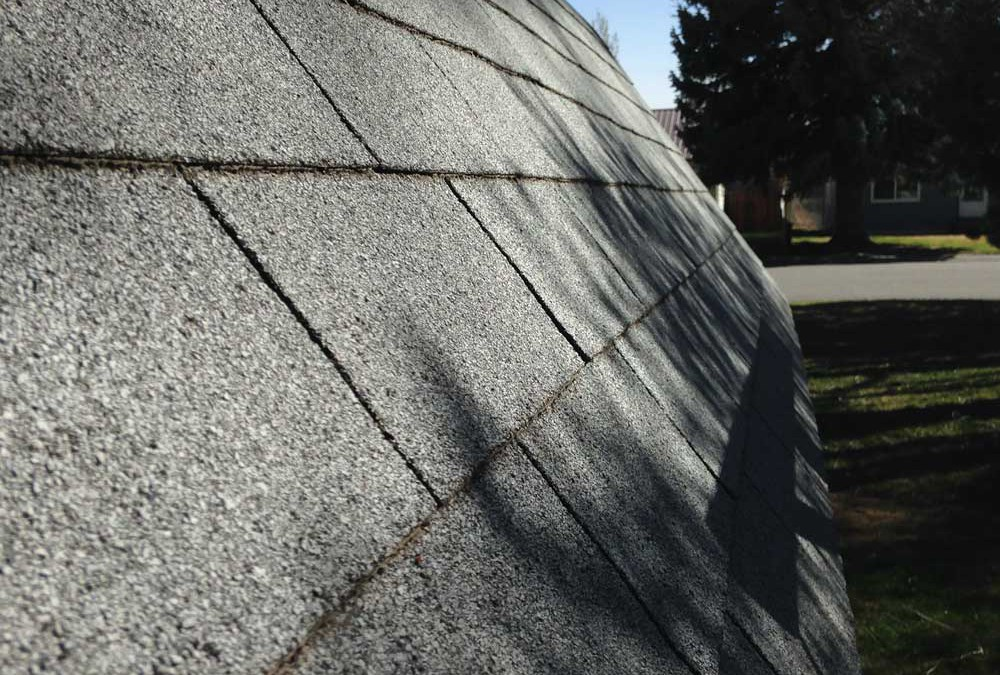 Year-Round Maintenance Tips for Your Roof