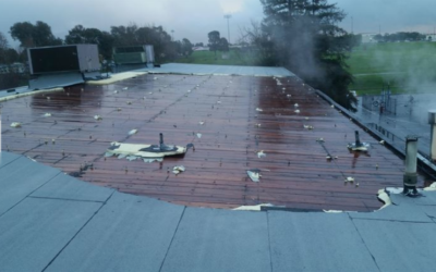 8 Common Commercial Roof Problems