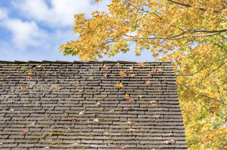 Why Autumn is the Ideal Time for Roof Repairs