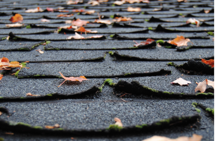 Autumn Roof Maintenance Tips