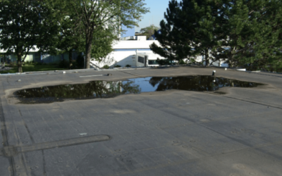 6 Consequences of Ponding Water on a Commercial Roof